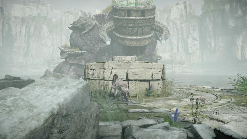 SHADOW OF THE COLOSSUS™_20200318093652.jpg